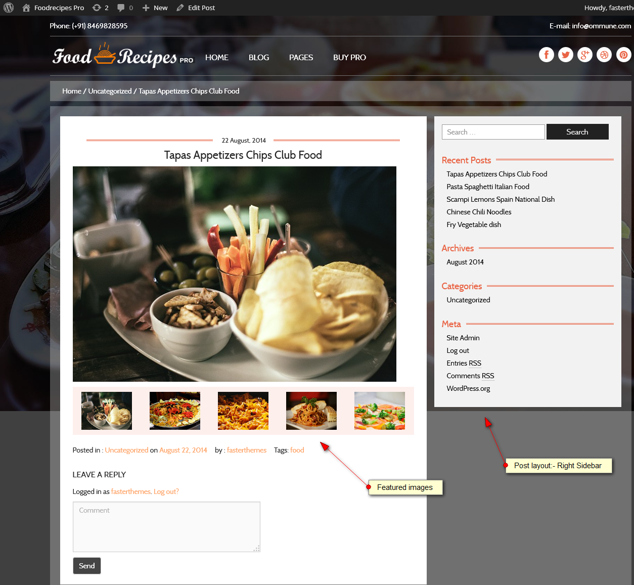 food pro blog layout right