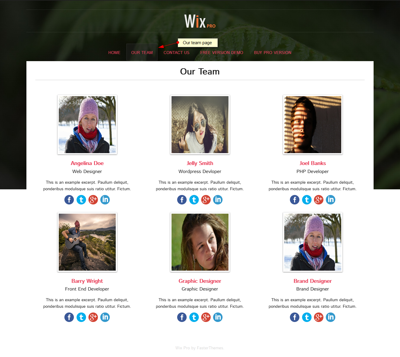 our team page